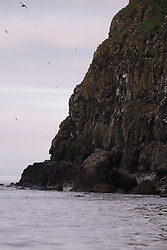 USA ALASKA  ST GEORGE ISLAND 7JUL12 - Coastline and cliffs in the west of the island of St. George in the Bering Sea, Alaska. The cliffs provide a prime nesting ground for a wide variety of seabirds.......Photo by Jiri Rezac / Greenpeace....© Jiri Rezac / Greenpeace