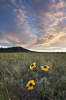 Prairie sunset near the Little Rocky Mountains Montana