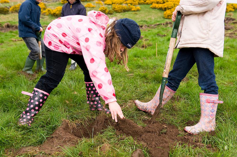 Children planting trees at Geordie's Wood, Yetts of Muckart, Perthshire
