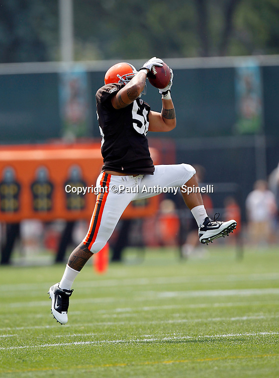 Cleveland Browns linebacker Kaluka Maiava (56) leaps to catch a pass during NFL football training camp at the Cleveland Browns Training Complex on Monday, August 9, 2010 in Berea, Ohio. (©Paul Anthony Spinelli)