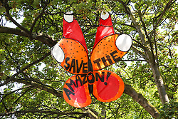 "© Licensed to London News Pictures. 24/08/2019. London, UK. A colourful butterfly with ""Save The Amazon"" written on it installed in a tree on Ladbroke Grove up ahead of the 2019 Notting Hill Carnival which takes place this weekend and on bank holiday Monday. Up to 1 million people are expected to attend the biggest street party in Europe. Photo credit: Dinendra Haria/LNP"