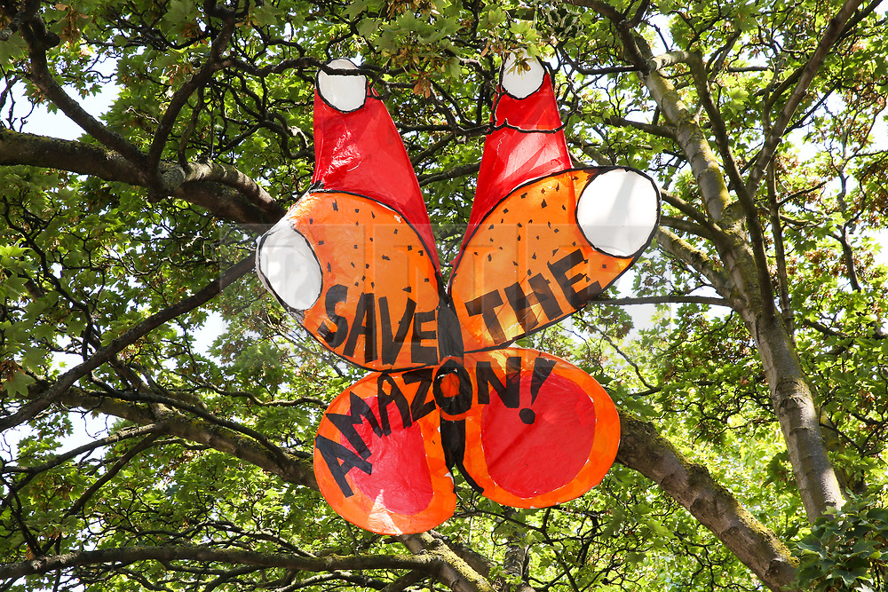 """© Licensed to London News Pictures. 24/08/2019. London, UK. A colourful butterfly with """"Save The Amazon"""" written on it installed in a tree on Ladbroke Grove up ahead of the 2019 Notting Hill Carnival which takes place this weekend and on bank holiday Monday. Up to 1 million people are expected to attend the biggest street party in Europe. Photo credit: Dinendra Haria/LNP"""