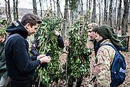 Satriano di Lucania, Basilicata, Italia, 07/02/2016<br /> La vestizione dei 131 Rumita per &quot;La Foresta che cammina&quot;, evento principale del carnevale di Satriano di Lucania<br /> <br /> Satriano di Lucania, Basilicata, Italy, 07/02/2016<br /> The dressing of the 131 Rumita (hermits) for the &ldquo;La Foresta che cammina&rdquo; (Forest Walking), the main event of carnival celebrations in Satriano di Lucania