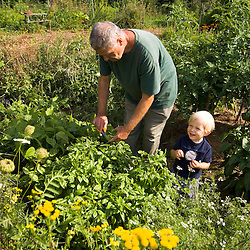 A man and his grandson gardening at a community garden in Gloucester, Massachusetts.