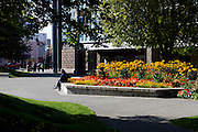 Alaska.  Brightly colored flowers fill one of the raised beds in Town Square next to the Performing Arts Center in downtown Anchorage on a sunny day in September while two Alaska native men sit comfortably on the bed edge and another adult couple with small children enters the Square from 6th Avenue.