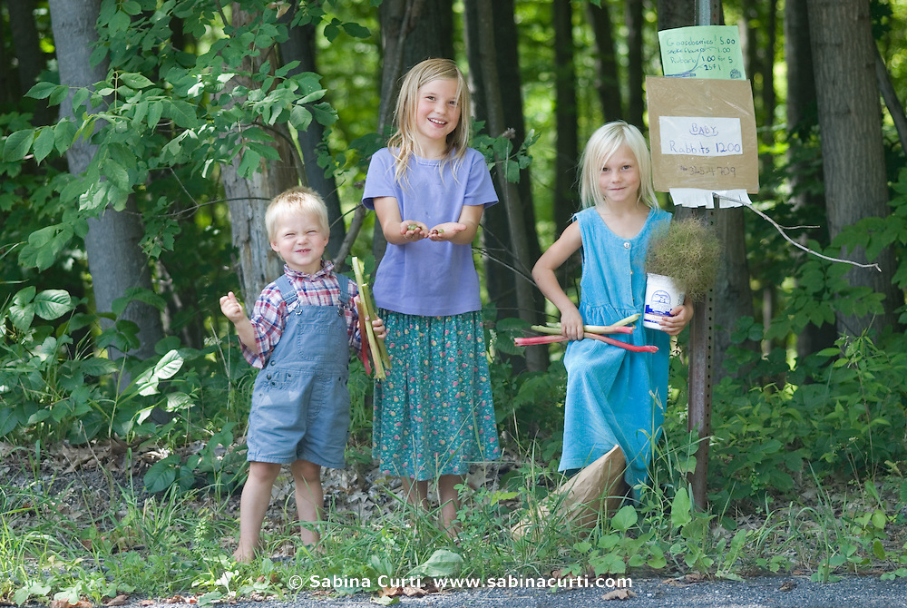 Family farm, children sell farm produce at road side farm stand, sustainable family farm in Hillsdale, Columbia County, NY, New York