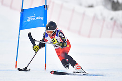 Super Combined and Super G, LUSCOMBE Braydon, LW2, CAN at the WPAS_2019 Alpine Skiing World Championships, Kranjska Gora, Slovenia