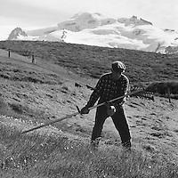 Ragnar Stef&aacute;nsson s&iacute;&eth;asti b&oacute;ndi &iacute; Skaftafelli. Hvannadsalshn&uacute;kur i bakgrunni, 1972<br /> <br /> Ragnar Stef&aacute;nsson, the last farmer at Skaftafell (National Park). In the background, Mt. Hvannadsalshn&uacute;kur, Iceland&rsquo;s highest peak. 1972