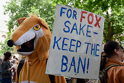 &copy; Licensed to London News Pictures. 29/05/2017. London UK. A demonstrator wearing a fox costume joins an &quot;Anti-Hunting March&quot; in central London, marching from Cavendish Square to outside Downing Street.  Protesters are demanding that the ban on fox hunting remains, contrary to reported comments by Theresa May, Prime Minister, that the 2004 Hunting Act could be repealed after the General Election.<br />  Photo credit : Stephen Chung/LNP