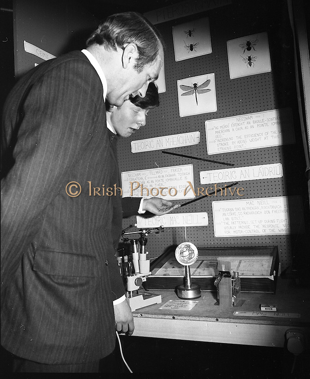 1972.07/01/1972.01/07/1972.7th January 1972.The Aer lingus Young Scientist Exhibition at the RDS, Dublin..Sean Mac Fheorais from Colaiste Mhuire, Cearnog Pharnell, Dublin showing his winning exhibit 'Grinn-staidear ar pterostigmata' to the Minister for Finance, George Colley.