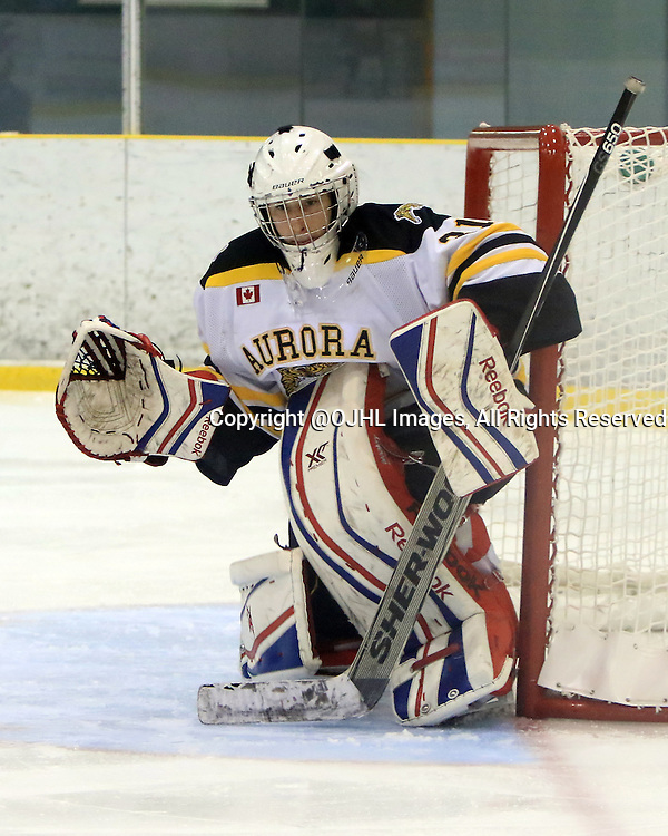 WELLINGTON, ON - Oct 16, 2015 : Ontario Junior Hockey League game action between Aurora and Wellington<br /> , Alex Brooks-Potts #31 of the Aurora Tigers during the third period<br /> (Photo by Ed McPherson / OJHL Images)