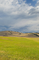 Big Sky views from ranch valleys in Granite County Montana