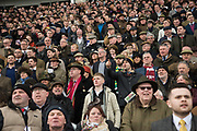 Grandstand, watching racing, Ladies Day, Cheltenham Festival, 13 March 2019
