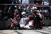March 15-17, 2018: Mobil 1 Sebring 12 hour. 38 Performance Tech Motorsports, ORECA LMP2, James French(S) USA Kyle Masson(S)