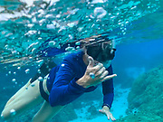 Snorkeling, Coral Garden, Bora Bora, Society Islands, French Polynesia; South Pacific