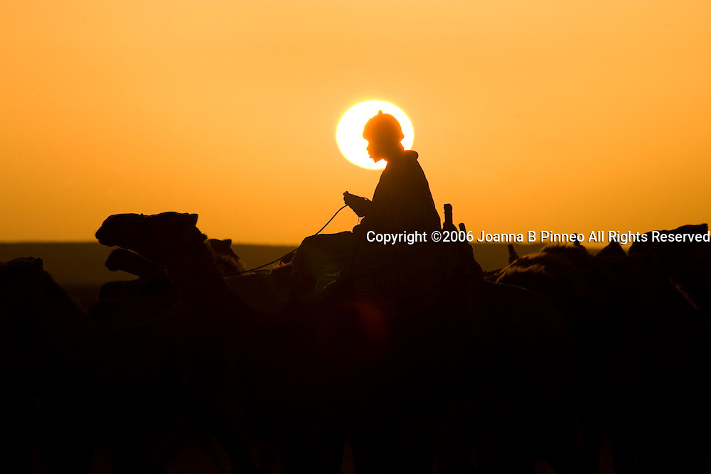 Sunrise in the Sahara Desert in Northern Sudan on a camel caravan. 150,000 camels travel to Egypt yearly.