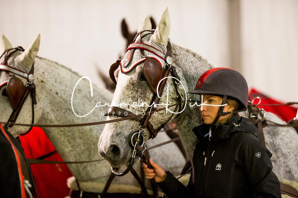 Weber Chester, USA, Baccara, Maestoso 51, Maestoso Mao, Ordog<br /> Jumping Mechelen 2019<br /> © Hippo Foto - Sharon Vandeput<br /> 30/12/19