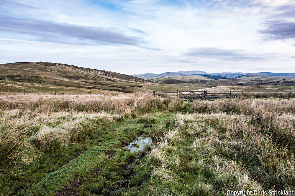 1st October 2016. Looking across Upper Coquetdale and the Otterburn Redesdale Ranges from the Outer Golden Pot.