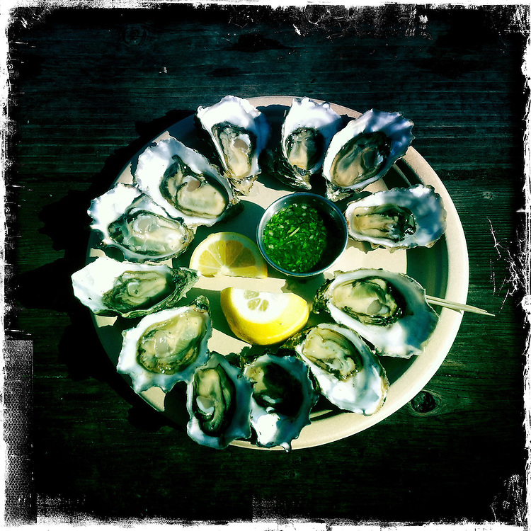 Plate of Oysters outdoors in Northern California.  iPhone Hipsta