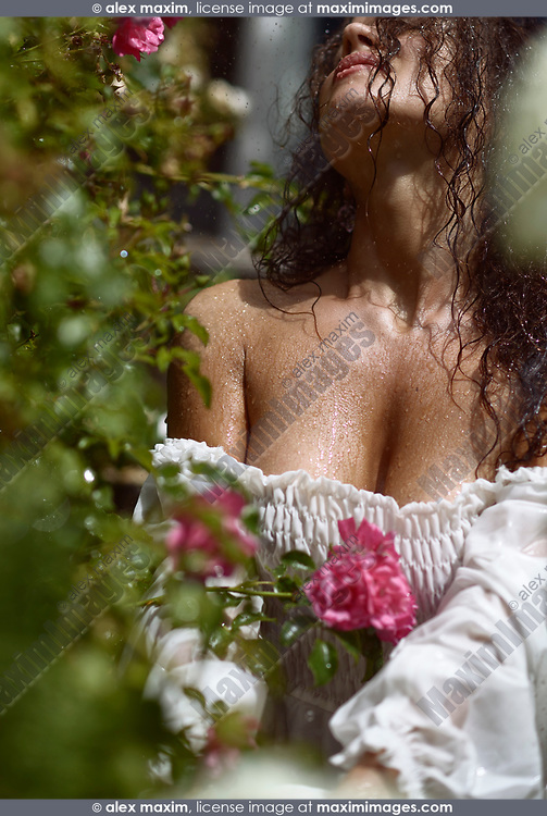 Sensual glamorous closeup portrait of a beautiful sexy woman with wet skin and hair and rain drops on her chest, sitting in a rose garden on a rainy sunny day in a wet white summer dress, body parts artistic closeup