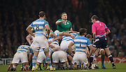 Cardiff, Great Britain, Irelands', Jamie HEASLIP, giving some visual and audio  points and instructions at the scrum, during the Quarter Final   Ireland vs Argentina.  2015 Rugby World Cup,  Venue, Millennium Stadium, Cardiff. Wales   Sunday  18/10/2015.   [Mandatory Credit; Peter Spurrier/Intersport-images]