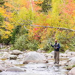 A man fly fishing in fall on Nash Stream in Reddington Township, Maine. High Peaks Region.