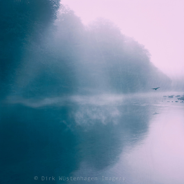 Misty morning on a river with reflection of a forest and sun breaking through the mist - colorized photograph<br />