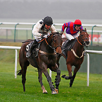 Mister Dillon and Jeremiah McGrath winning the 2.10 race