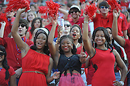 Ole Miss students cheer vs. Southeast Missouri State at Vaught-Hemingway Stadium in Oxford, Miss. on Saturday, September 7, 2013. Ole Miss won 31-13.