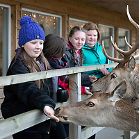 VisitScotland 'hired' four pupils from Lornshill Academy, Clackmannanshire as quality tourism advisors for the day to assess Highland Safaris in Perthshire….<br />
