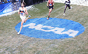 Nov 17, 2018; Madison, WI, USA; Morgan McDonald (723) of Wisconsin wins the men's race in 29:08.3 during the NCAA Cross Country Championships at the Thomas Zimmer Championship Course.