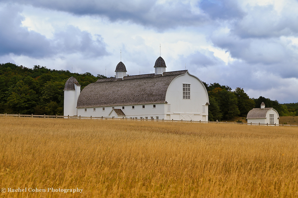 &quot;The White Barn&quot;<br /> <br /> Beautiful rural Michigan barn and golden field in early autumn!!<br /> <br /> Autumn Landscapes by Rachel Cohen