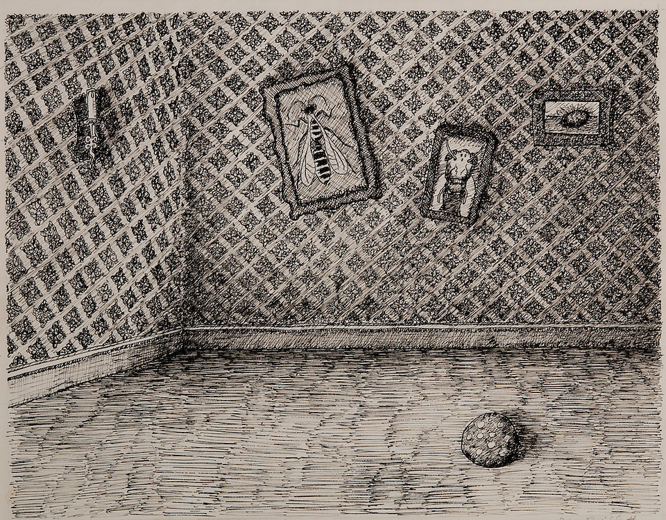 INSIDE THE INSECT HOUSE, ink drawing 1993