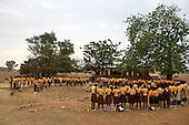 120220_VSO_Ghana