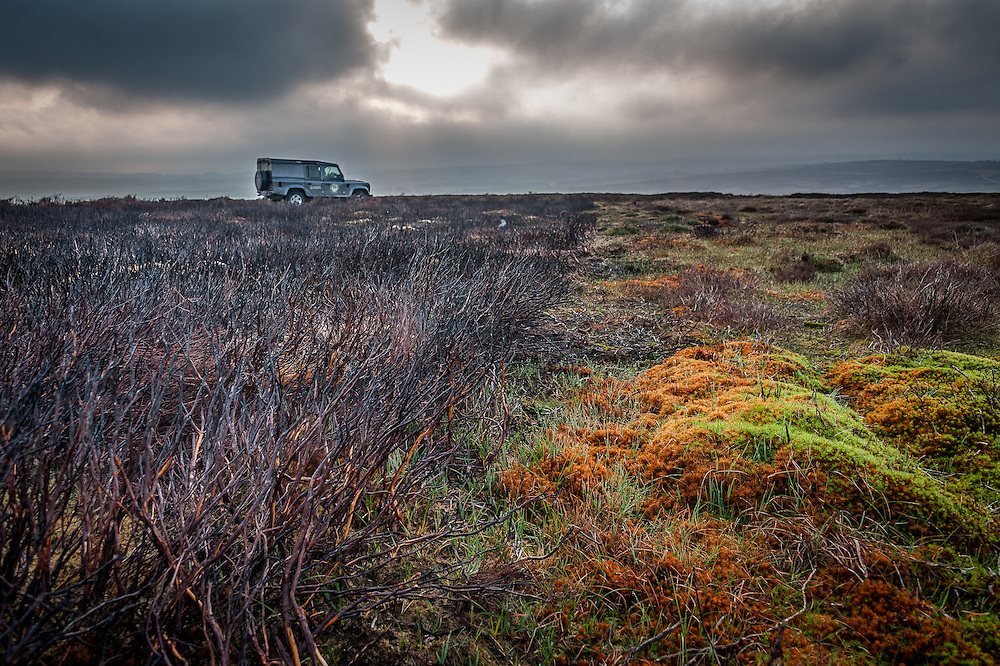 Controlled heather burning on Yorkshire grouse moors is controversial management strategy. Photographed for BBC Wildlife magazine.