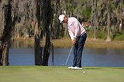 Tiger Woods of the US putts on the second hole during the 2013 Tavistock Cup at Isleworth Golf and Country Club in Windermere, Florida March 26, 2013. ©2013 Scott A. Miller