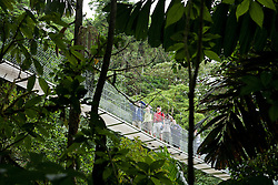 La Fortuna, Alajuela:  People exploring the Costa Rican rainforest cross hanging bidges. Rainforest exploration at the Hanging Bridges.