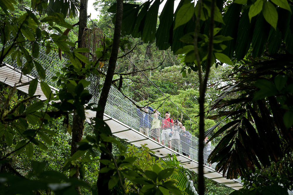 La Fortuna, Alajuela:  People exploring the Costa Rican rainforest cross hanging bidges. Rainforest exploration at the Hanging Bridges.