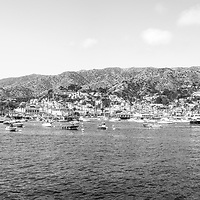 Catalina Island Avalon Harbor ultra high resolution panorama black and white image. Beautiful Santa Catalina Island is a popular travel destination off the Southern California coast. Copyright ⓒ 2017 Paul Velgos with All Rights Reserved.