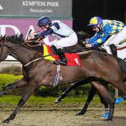 Lily Edge and K T O'Neill winning the 8.00 race