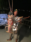 Giant lobster was caught by a fisherman in Bermuda<br /> <br /> One unsuspecting fisherman caught one heck of a lobster weighing in at 14 pounds while on a fishing trip in Bermuda.<br /> The massive crustacean was caught 'by accident' as Tristan Loescher was out fishing for snapper,<br /> <br /> Loescher reeled in the mammoth lobster while on the Sanctuary Marine Bermuda's charter boat, the station reported.<br /> <br /> 'Hurricane Nicole blew in some sea monsters.'<br /> Hurricane Nicole was a powerful category 4 hurricane that ripped through Bermuda last week with winds up to 115mph.<br /> <br /> A storm surge was expected to raise water levels by six to eight feet above normal tides, and five to eight inches of rain are expected to fall over the island through Thursday evening, Fox reported.<br /> After Loescher took photos of the Giant Spiny lobster, it was released safely back into the ocean.<br /> <br /> It's unclear how old the lobster is, but marine experts say they can live to be about 70 years old<br /> <br /> The largest lobster ever caught weighed 44 pounds and was captured in 1977, according to the Guinness Book of World Records. <br /> That giant lobster was caught off the coast of Nova Scotia, Canada.<br /> The average weight of most lobsters for sale are between one and three pounds. <br /> <br /> For years  the largest lobster ever caught that weighed around 20 kg in 1977 off the coast of Nova Scotia, Canada.<br /> Sanctuary Marine Bermuda/Exclusivepix Media