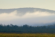 Mamakating, New York - Morning scenes at the Bashakill Wildlife Management Area on Sept. 9, 2014.