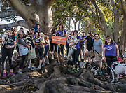 """The Dogs Without Borders team at the 2016 Best Friends """"Strut Your Mutt"""" event to raise money for Los Angeles area rescue organizations."""