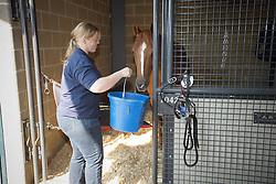 Belgian reing team at the stables in the Kentucky Horse Park<br /> World Equestrian Games Lexington - Kentucky 2010<br /> © Dirk Caremans