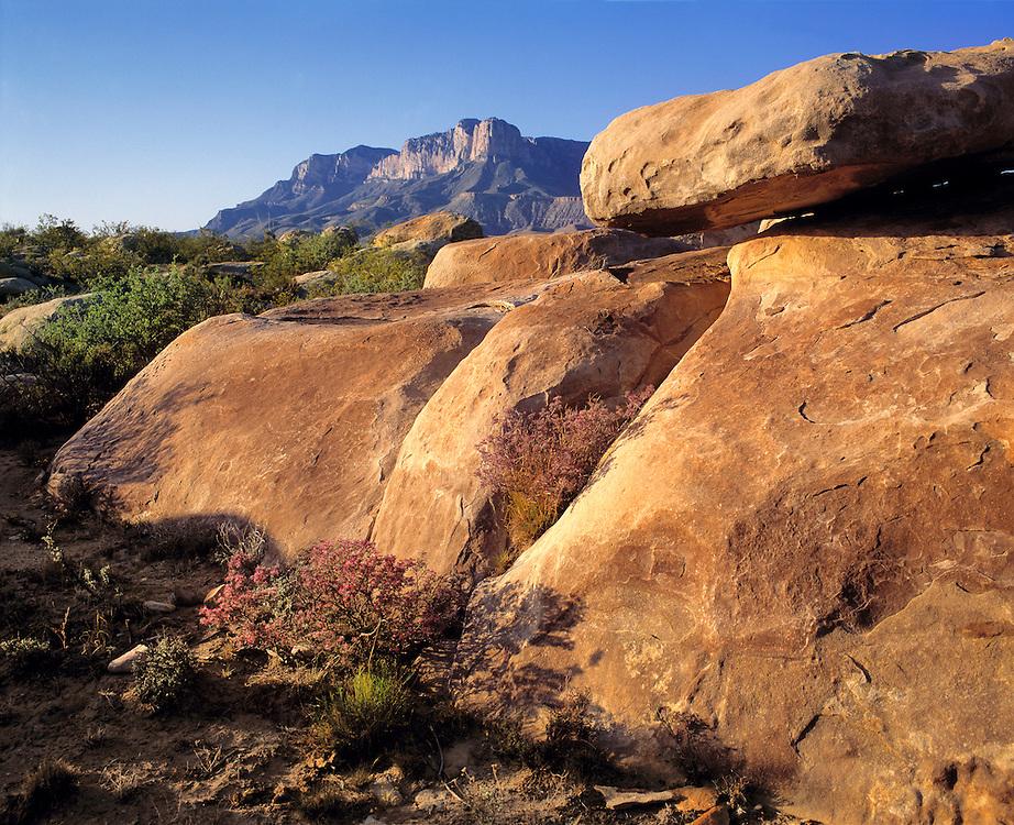 El Capitan Peak dominates the arid landscape of Guadalupe Mountains National Park, Texas.