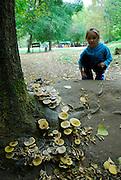 Squatting child (9 years old) looking at mushrooms or toadstools growing in Krka National Park, Croatia