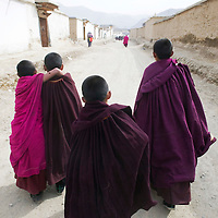 APRIL , 5, 2012 : monk novices walk back to their dorms afer a morning prayer at Labrang monastery.