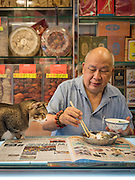 EXCLSUIVE<br /> Hong Kong&rsquo;s shop cats<br /> <br /> Your office job is tough. You have to wake up early, stare at a screen all day, and sometimes the kettle breaks and you can&rsquo;t make a cup of tea.<br /> But spare a thought for the real hard-workers.<br /> We&rsquo;re talking, of course, about the cats of Hong Kong.<br /> Every day, these hard-working felines wake up, stroll out of their little cat baskets, and get stuck in to a hard day working up front in their shop.<br /> <br /> Their days are spent tirelessly looking adorable, greeting customers, hunting mice, making sales, and ensuring high standards of cleanliness (mostly through licking, but still).<br /> It&rsquo;s tough work, but someone&rsquo;s got to do it. And these cats are entirely dedicated to their work, always willing to stay late and make sure everything&rsquo;s taken care of &ndash; even if that means napping behind the till.<br /> <br /> One photographer is taking the time to bring light to these unappreciated hard-workers, with a new photo series called Hong Kong Shop Cats.<br /> As part of his ongoing Chinese Whiskers series, photographer Marcel Heijnen has been documenting the lives of cats living and working in shops around Hong Kong.<br /> <br /> Originally from the Netherlands, Marcel was immediately drawn to Hong Kong&rsquo;s shop cats when he moved to the city &ndash; but he never thought they would become the focus of his next project.<br /> Marcel describes Hong Kong Shop Cats as a &lsquo;total fluke&rsquo;.<br /> &lsquo;I moved back to Hong Kong after 18 years and found myself living without cats for the first time in 40 years,&rsquo;<br /> <br /> &lsquo;So when I noticed a cat sitting proudly on the counter of a shop nearby my new place in the Sheung Wan/Sai Ying Pun area, I went over to pet it and took a few casual photos.<br /> &lsquo;I shot a few more of other shop cats nearby and put them on Facebook.&rsquo;<br /> <br /> Of course, the reaction online was overwhelmingly 