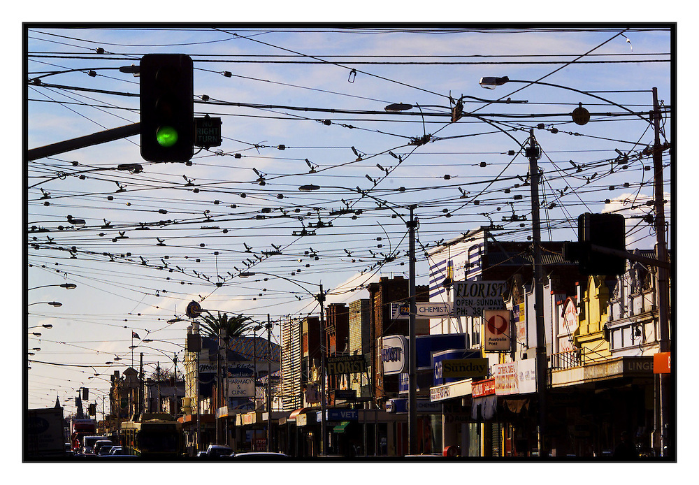 csz020731.001.001.jpg..Digicam000..Shows shops in Sydney Road, Coburg..Pic By Craig Sillitoe..overhead tram cables melbourne photographers, commercial photographers, industrial photographers, corporate photographer, architectural photographers, This photograph can be used for non commercial uses with attribution. Credit: Craig Sillitoe Photography / http://www.csillitoe.com<br /> <br /> It is protected under the Creative Commons Attribution-NonCommercial-ShareAlike 4.0 International License. To view a copy of this license, visit http://creativecommons.org/licenses/by-nc-sa/4.0/.