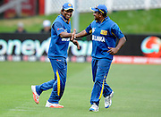 Jeewan Mendis celebrates his catch with team mate during the ICC Cricket World Cup match between Afghanistan and Sri Lanka at university oval in Dunedin, New Zealand. Photo: Richard Hood/photosport.co.nz